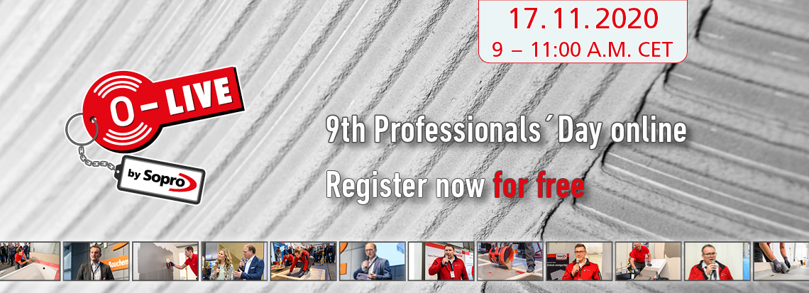 9th Professionals´Day 17.11.20